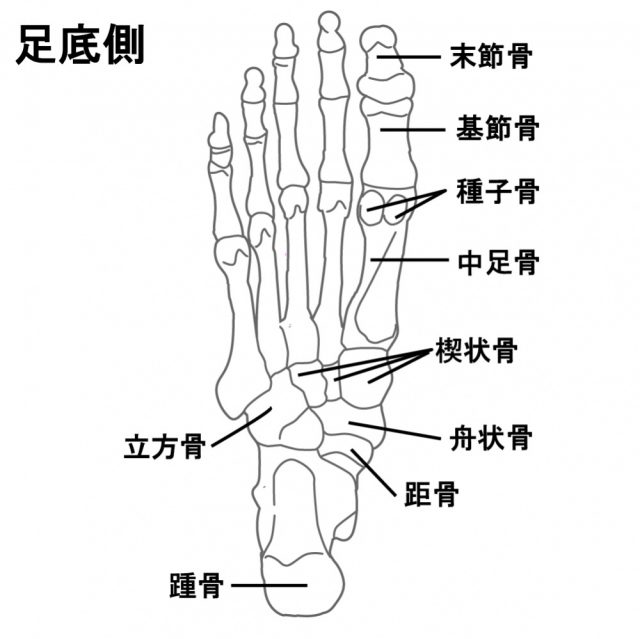 足底筋膜炎へのアプローチの仕方は?